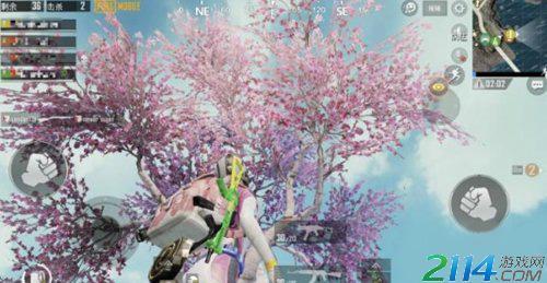 绝地求生和平精英樱花树位置大全